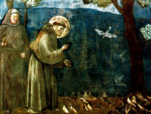 St Francis of Assisi preaching to the birds. By Giotto di Bondone