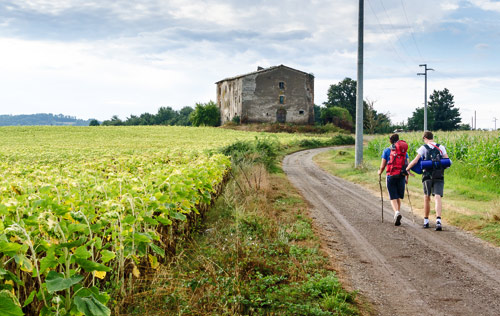 Pilgrims walking the Via Francigena along the top of Spain
